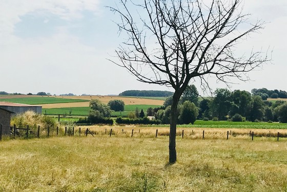 Prachtig gelegen bouwgrond met panoramisch zicht op velden en weiden. Zeer rustig straatje. Twee half open bebouwing
